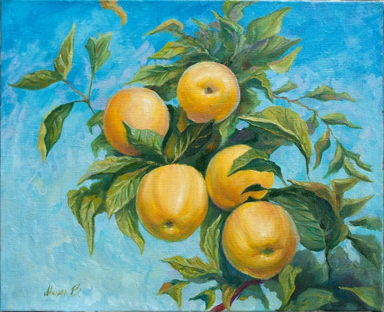 "Oil painting ""Apples"" 40x50cm."